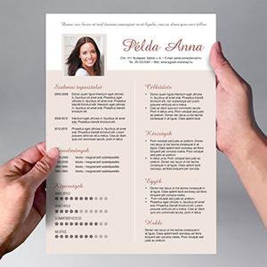 kreatív önéletrajz írás Egyedi Önéletrajz design kialakítása kreatív önéletrajz írás