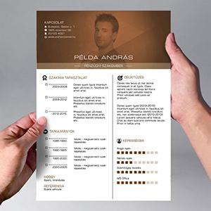 grafikus önéletrajz minta Egyedi Önéletrajz design kialakítása grafikus önéletrajz minta